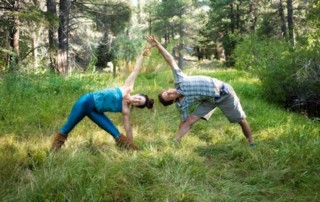Trikonasana - building structures and keeping them flexible